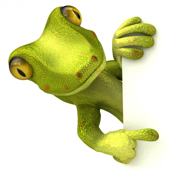 bigstock-Green-gecko-5915748