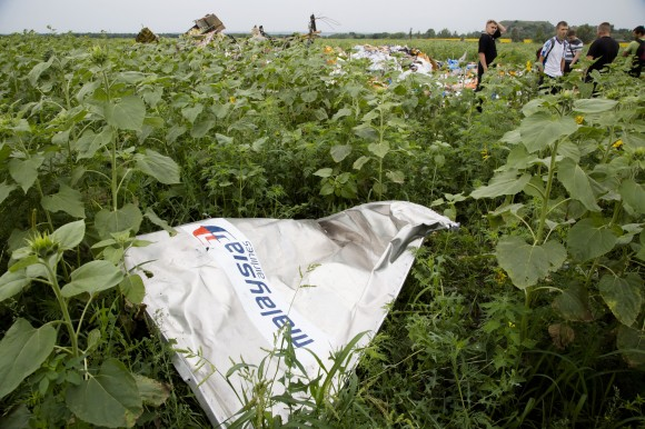 Piece of Malaysian Airlines plane that crashed in Ukraine. AP Photo
