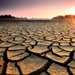 drought