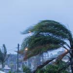 hurricane_weather