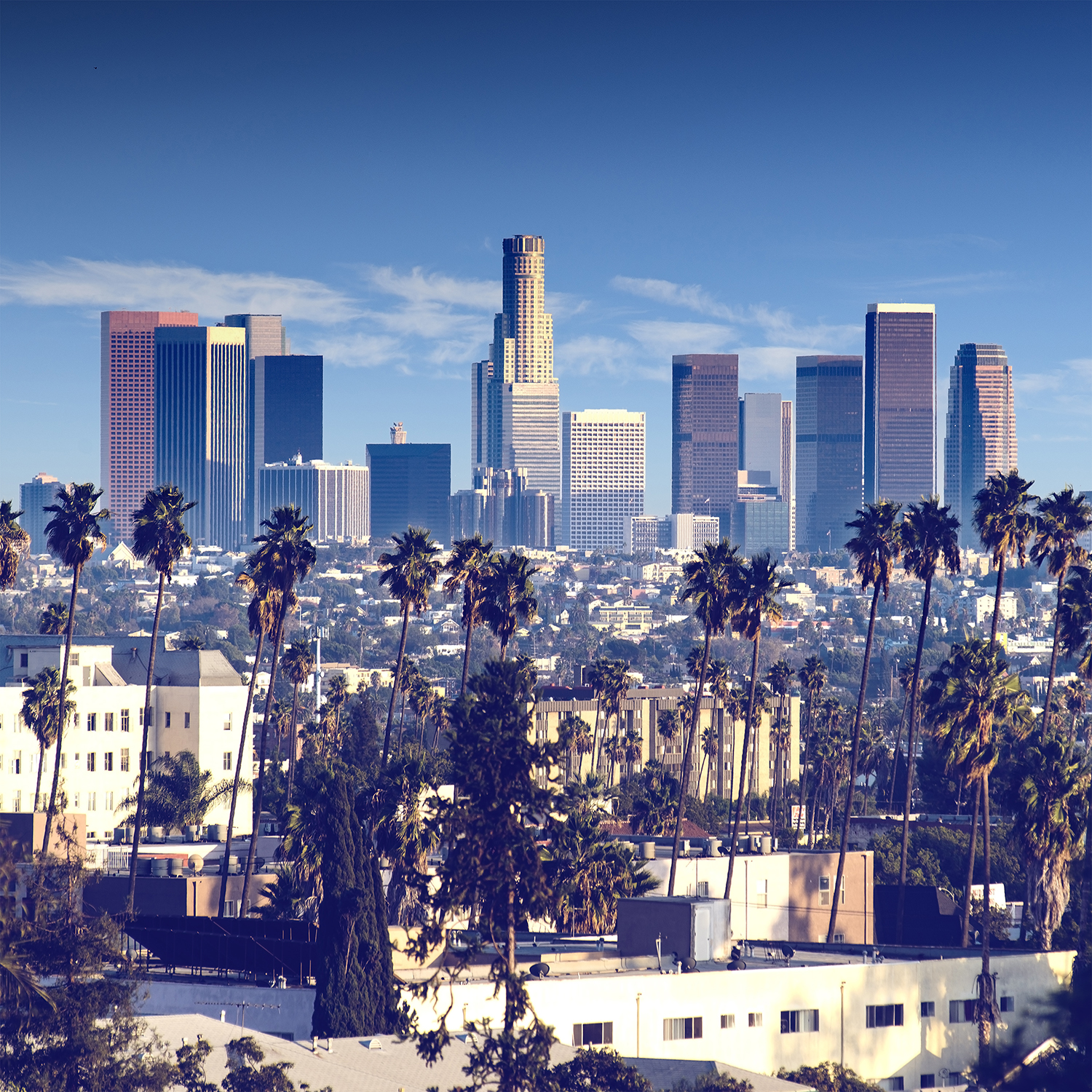 Downtown Apartments On De La Montagne Montreal: Burns & Wilcox Opens Office In Downtown Los Angeles