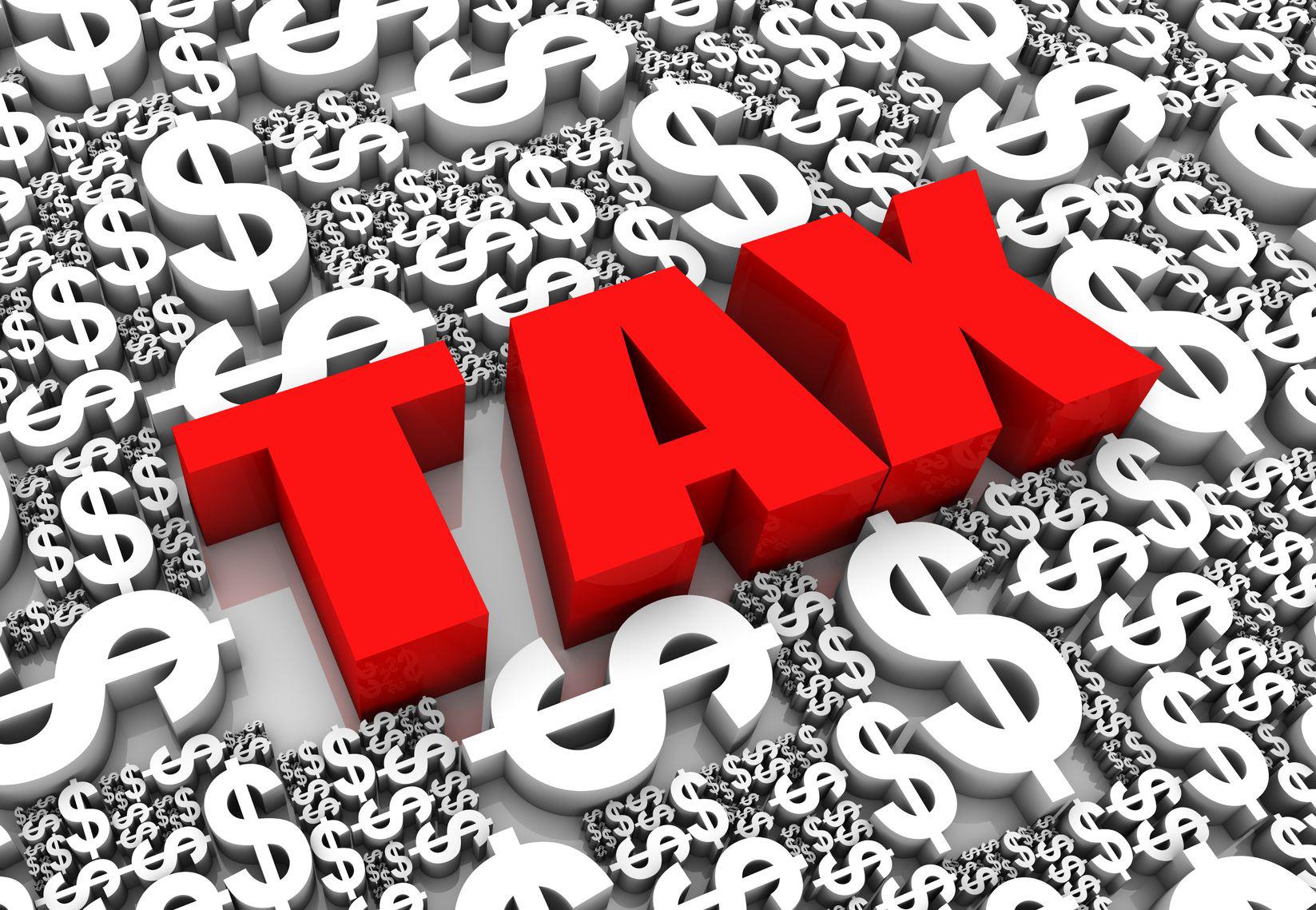 business plan cash budget definition
