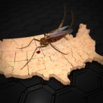 An illustration related to the outbreak of the Zika Virus in the US with a mosquito on a US map with skin rash texture. Symptoms of Zika Virus include mild headaches maculopapular rash fever malaise conjunctivitis and arthralgia.