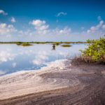 nature-conservancy-florida-climate-risks