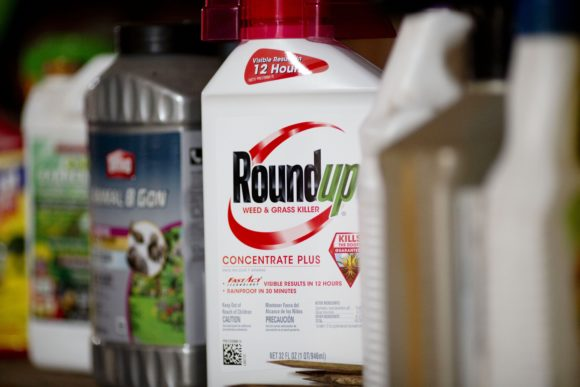 INSURANCE POLICY INFORMATION: Court Denies Bayer's $2 Billion Proposition to Finish Summary Lawsuits