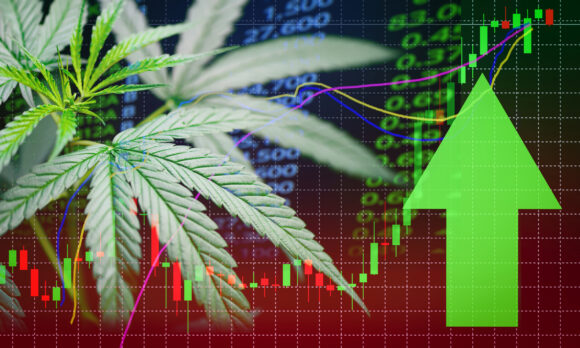 As the legalization of cannabis expands, we'll likely see more investment opportunities