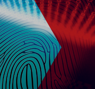 identity fraud insurance