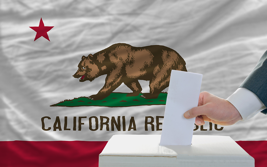 election voting california