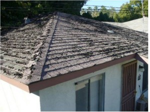Figure 3. Roof with Organic Growth and in Disrepair
