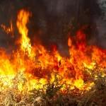 fire_figure